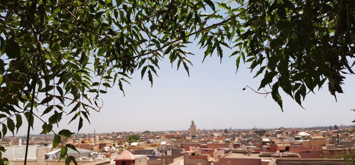 Tjejresa till Marrakech 11-16 november 2017